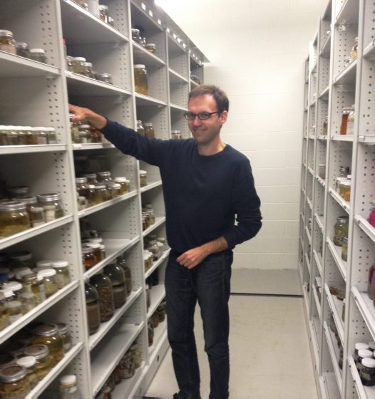 Dr Mikhail Daneliya, Australian Museum Research Institute Visiting Collection Fellow 2015.