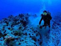 Stephen diving at Marotiri Rocks