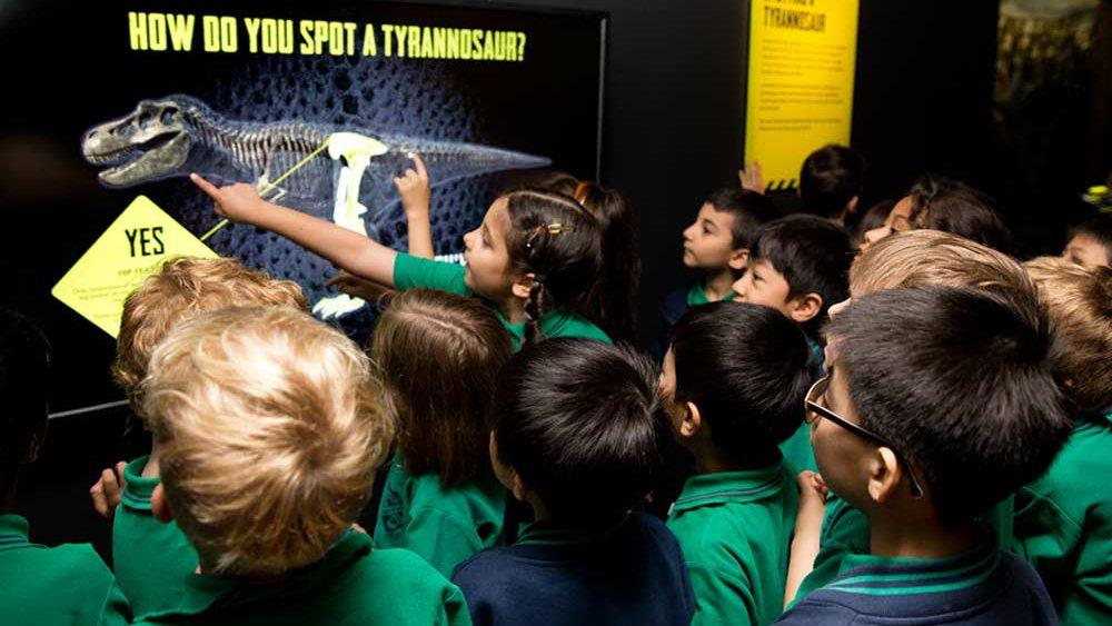 Tyrannosaurs educational interactives
