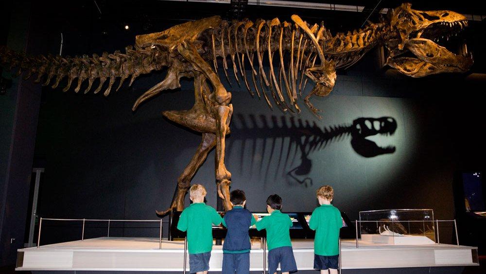 Giant T.rex shadow