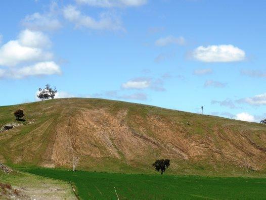 The Fossil Hill, Cliefden, Upper Ordovician marine fossil site.