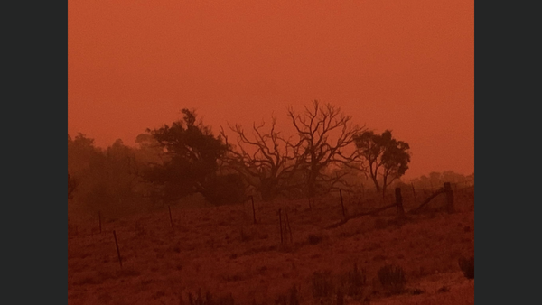 Southern hell scape   in between the small town of dalgety And the country town of cooma, near the snowy mountains region  Taken 5:30pm January 4, 2020 Just 10 minutes before ash-rain started falling out of the sky