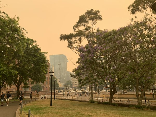A hazy view from Central Station, Sydney.