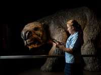 School girl looking at megafauna display