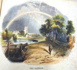 The Rainbow Illustration