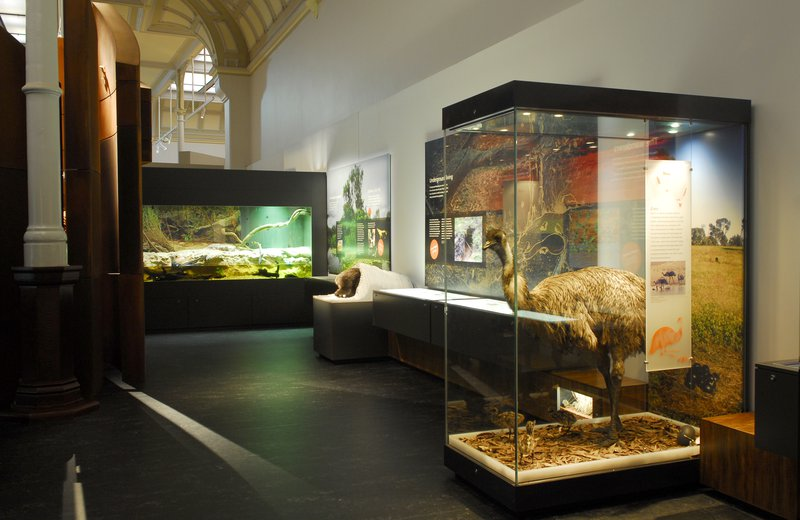 Surviving Australia Gallery
