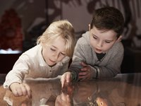 Kids in Dinosaur Gallery