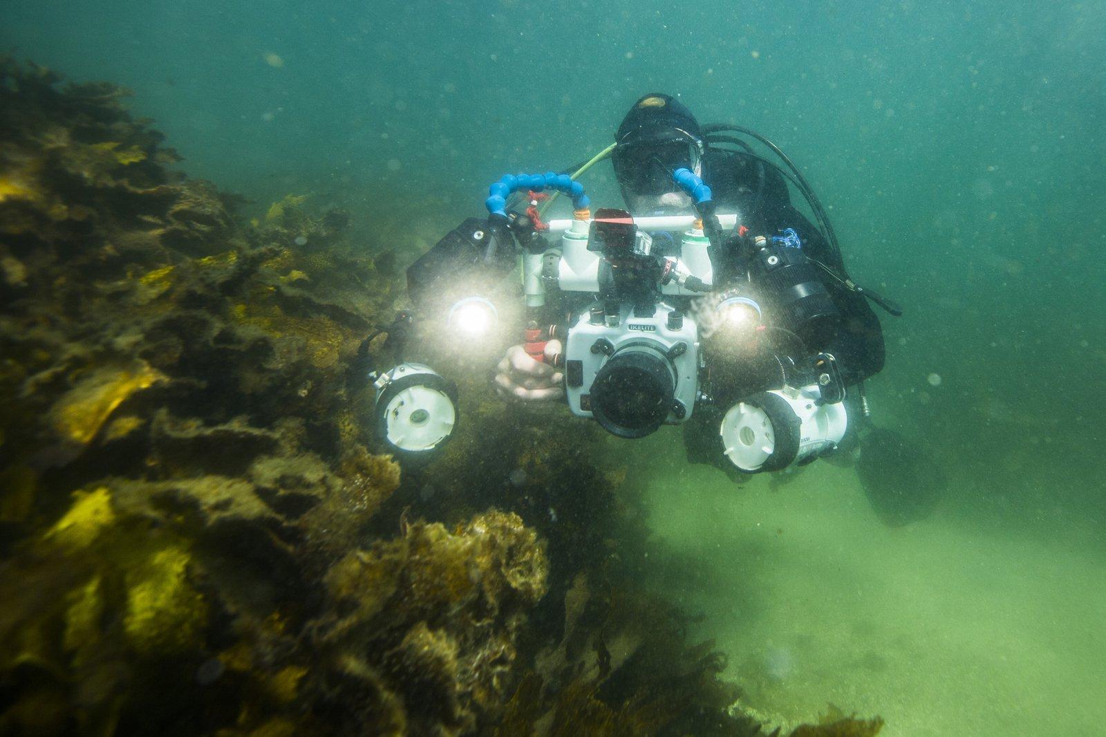 Andrew Trevor-Jones, citizen scientist for Australasian Fishes