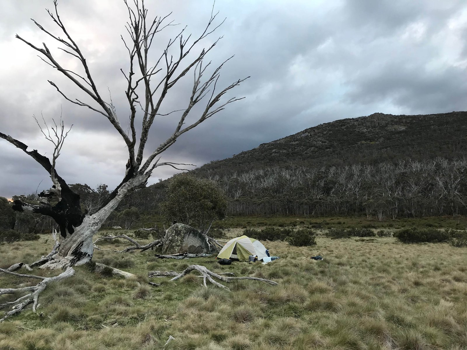 Campsite at Namadgi National Park during the ACT Bush Blitz.