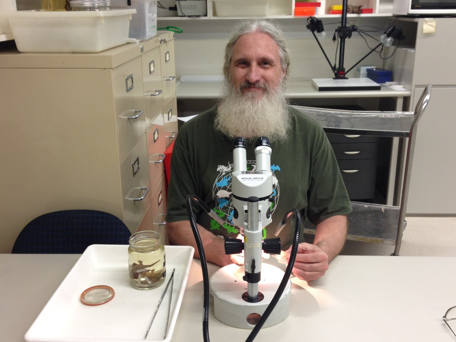 Dr Glenn Shea, AMRI Research Associate (Herpetology)