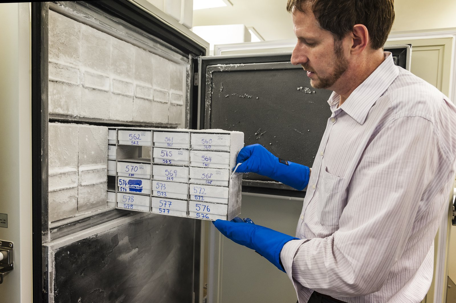 Dr Mark Eldridge with the frozen tissue collection