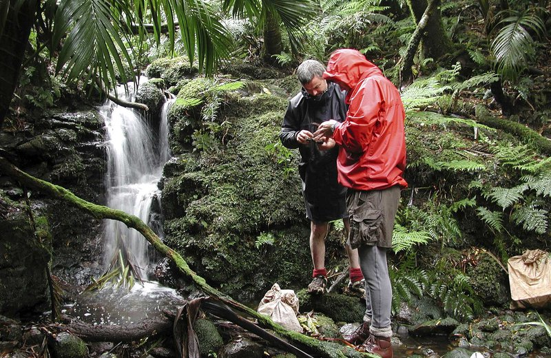 Scientists on Lord Howe Island