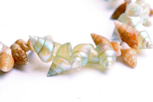 Shell necklace made by Tasmanian Aboriginal artist Aunty Lola Greeno