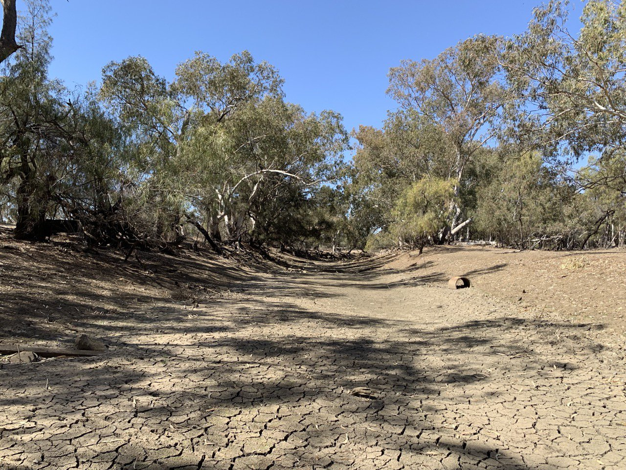 Dry river bed, NSW