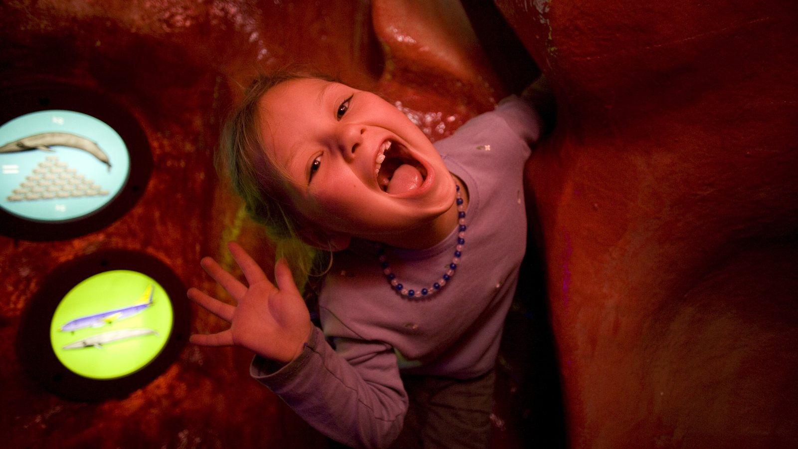 Young visitor climbs through Blue Whale heart model