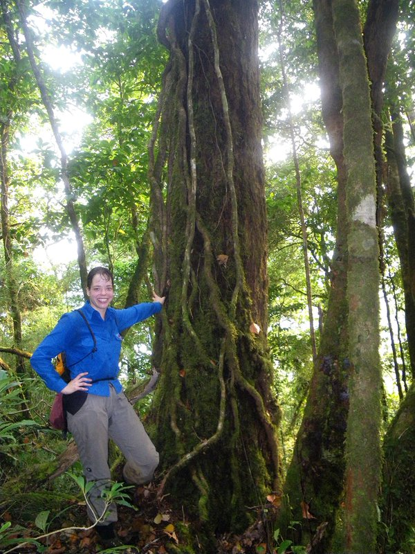 Dr Jodi Rowley in the field in Central Vietnam