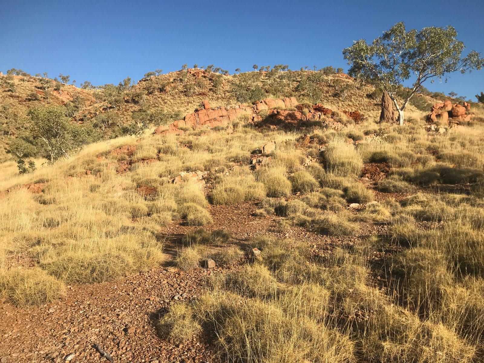 Stunning Kimberley landscape