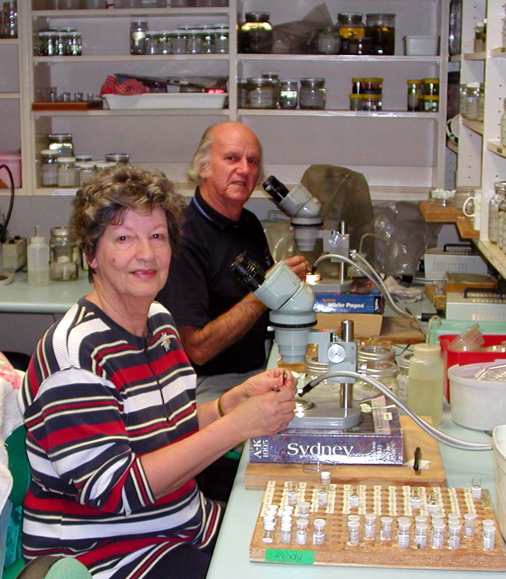 Marine Invertebrates volunteers