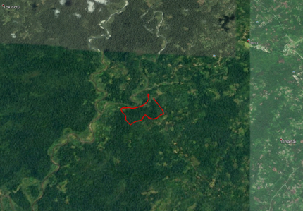New conservation area, Bougainville