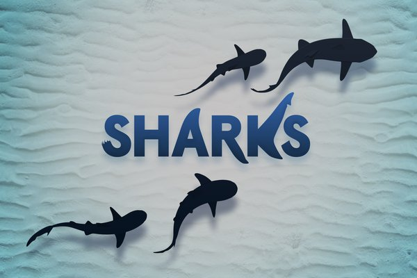 Stockland Sharks competition