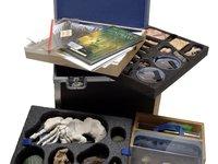 Museum in a Box - Evolution of Australian Biota