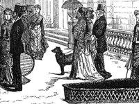 Perishable coffin at Stafford House