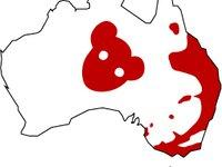 Drop Bear Distribution Map
