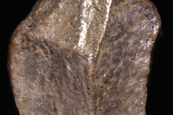 Oldowan stone tool cast