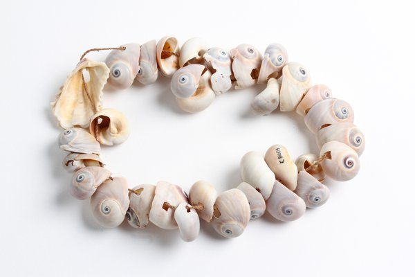 Baby rattle made from shells