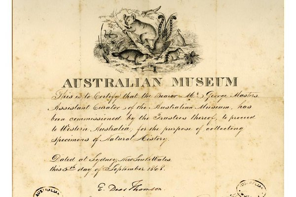 Collectors Certificate 1868
