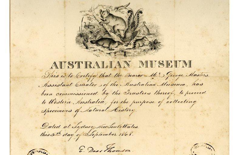 Collectors Certificate 1868