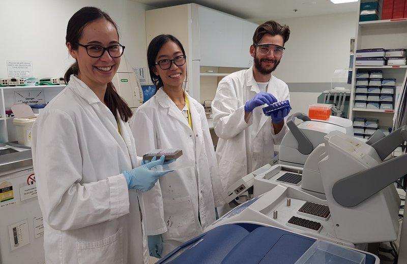 2017 DNA Interns