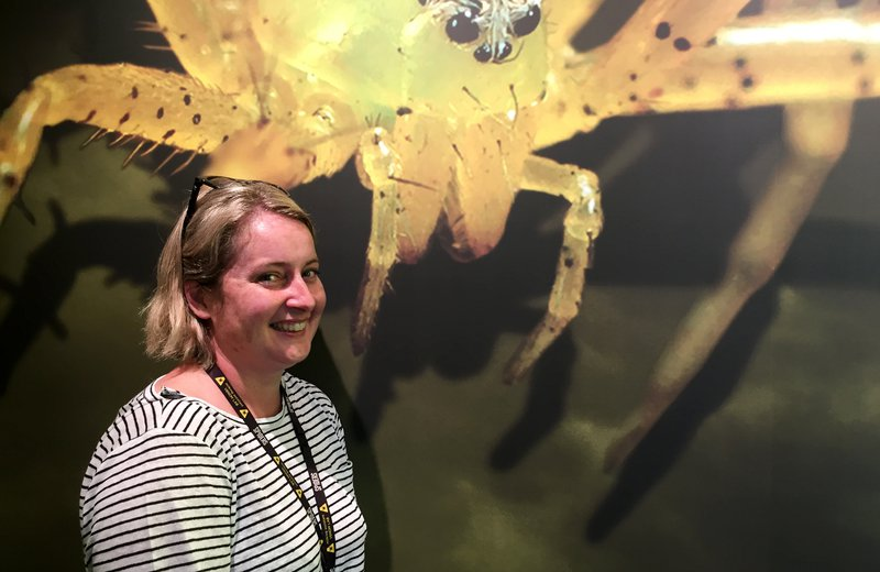 Catherine Timbrell, Exhibitions Producer of Spiders
