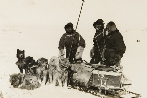 Douglas Mawson in the Antarctic