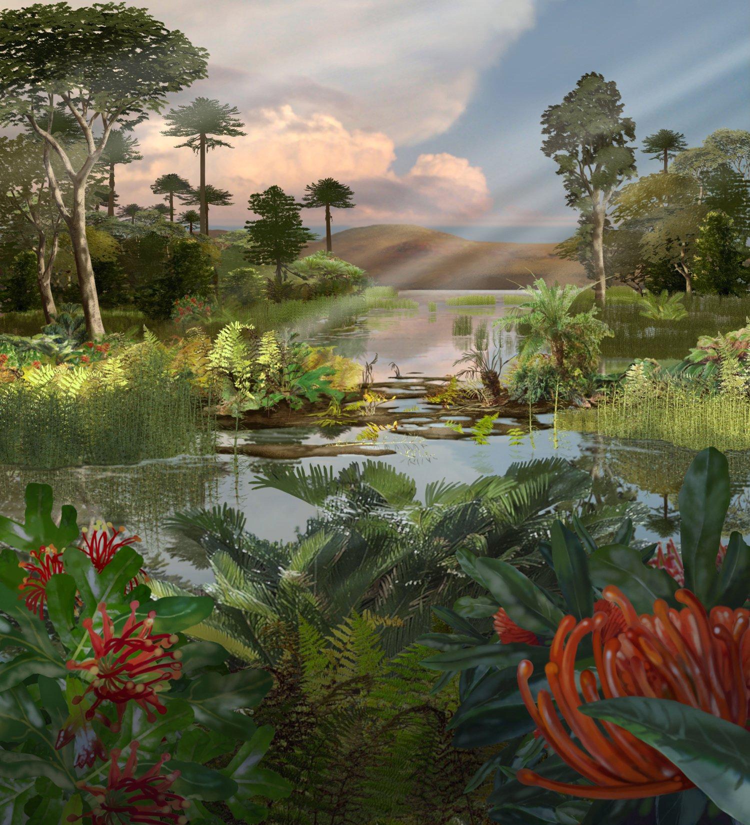 Late Cretaceous