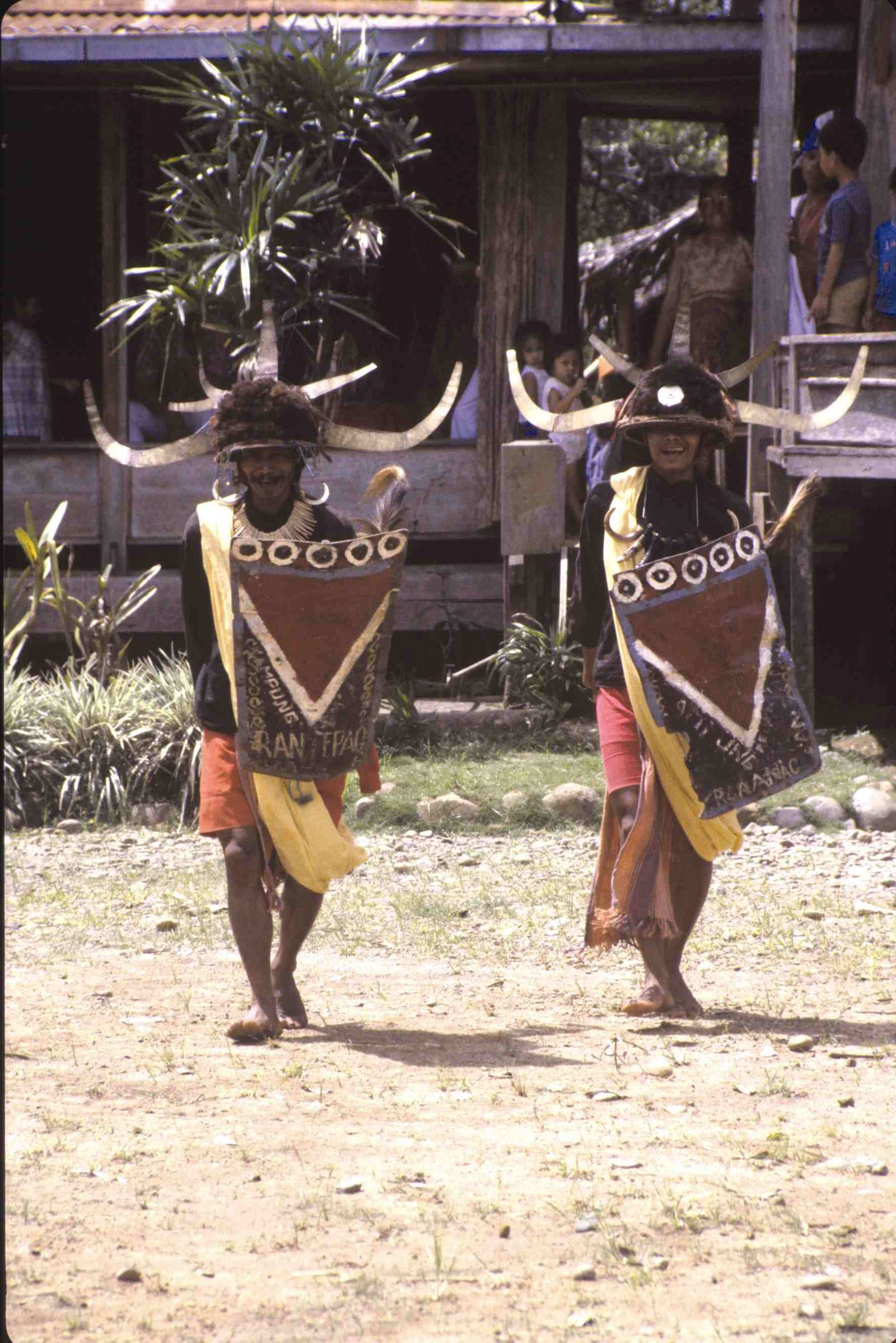 Toraja dancers perform a warrior dance