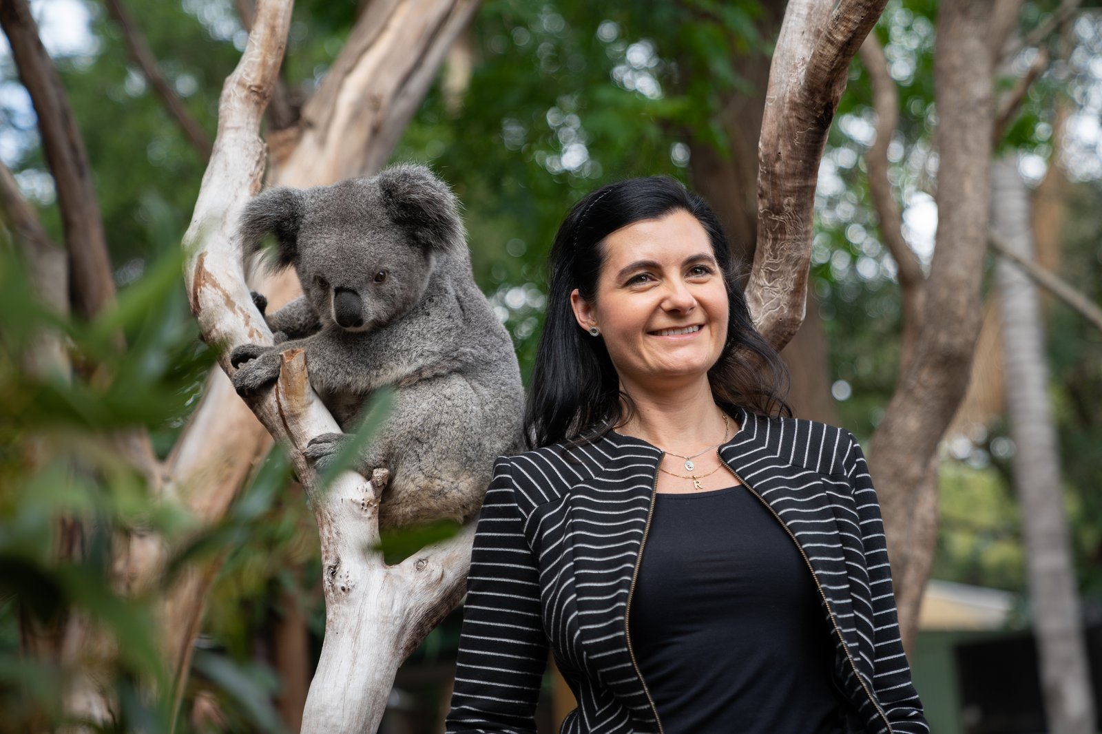 Rebecca Johnson and Koala at Featherdale Wildlife Park