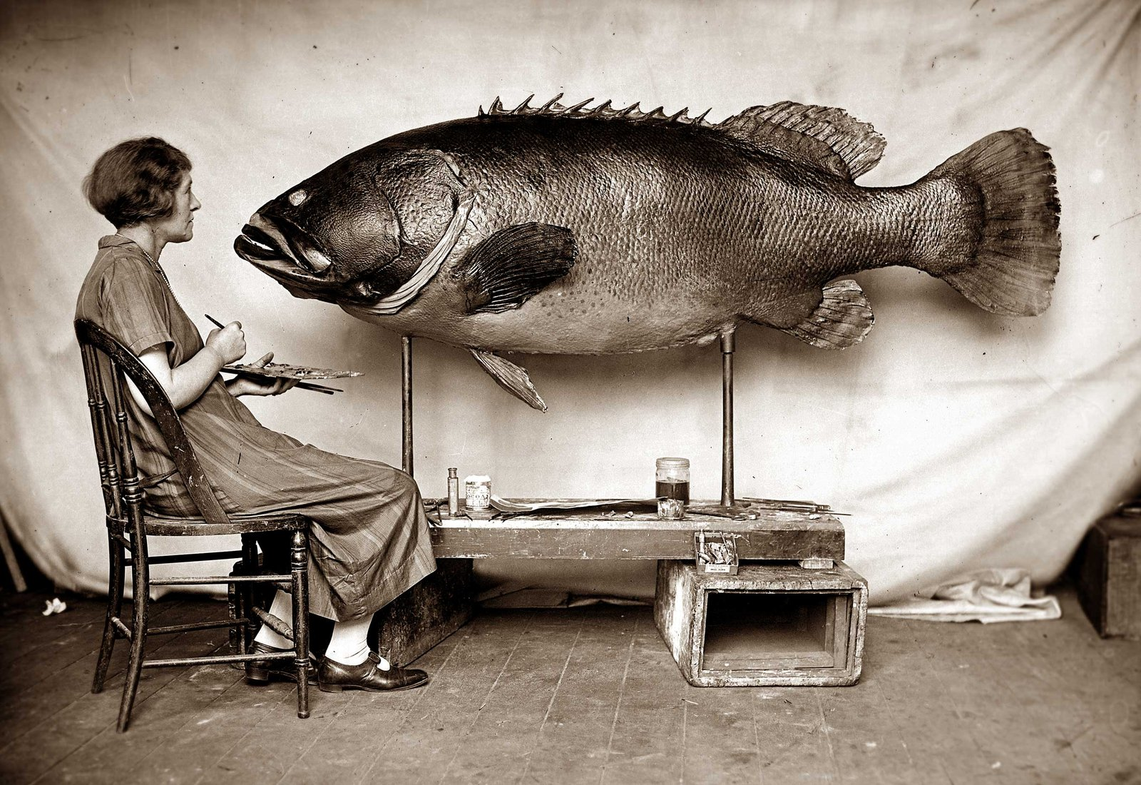 Ethel King with Queensland Groper