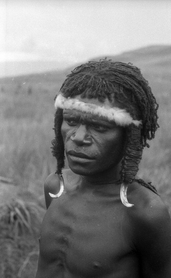 Portrait, PNG Highlands