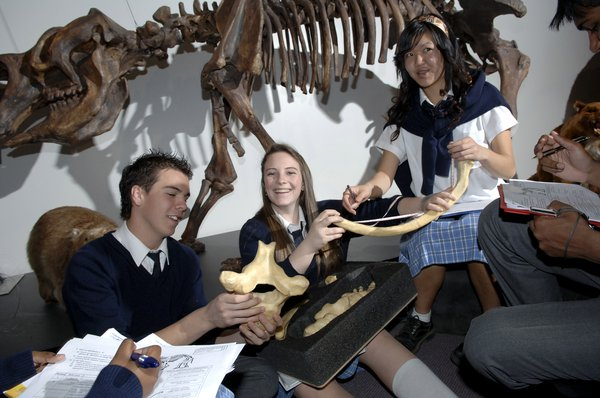 Secondary Students Fossils