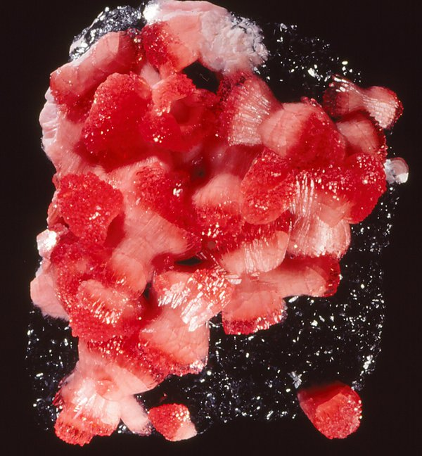 Rhodochrosite on magnetite