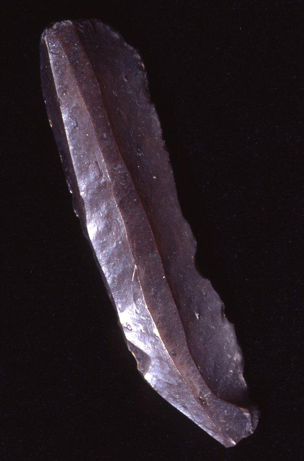 Tool cast blade