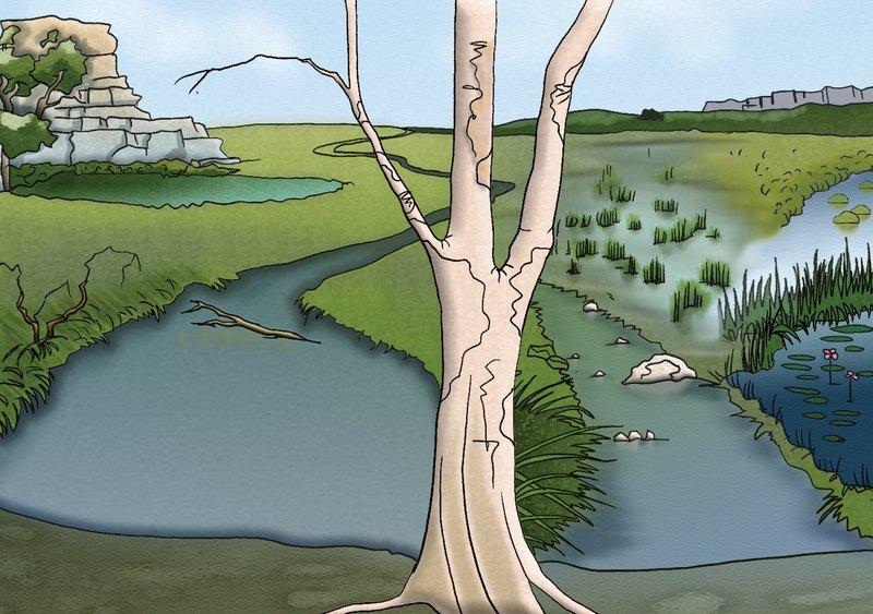 Fresh-Water habitat