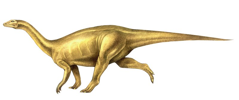 Lufengosaurus