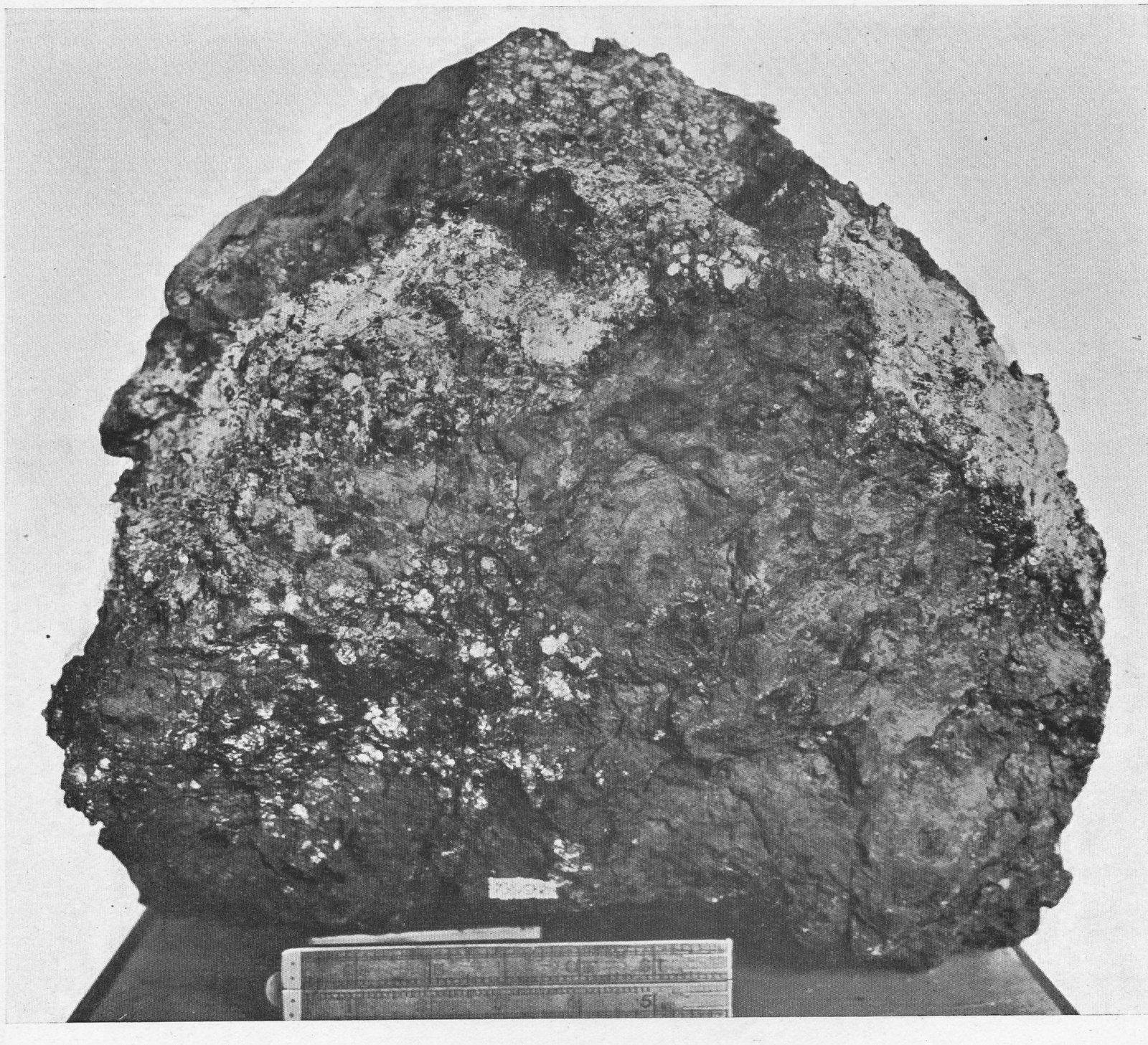 The Molong Meteorite