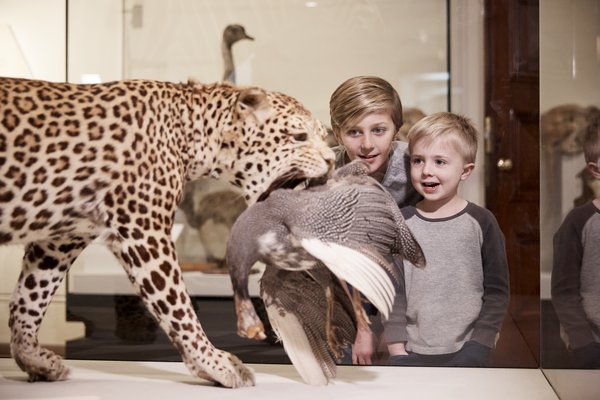 Wild Planet Family