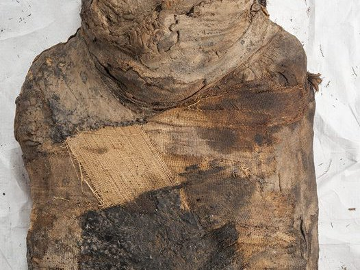 Upper part of the mummy.
