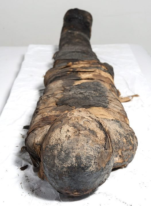 Mummy out of his coffin.