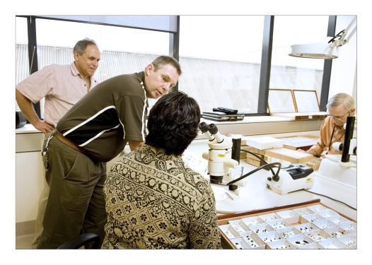 Diptera training worskhop, 2009.