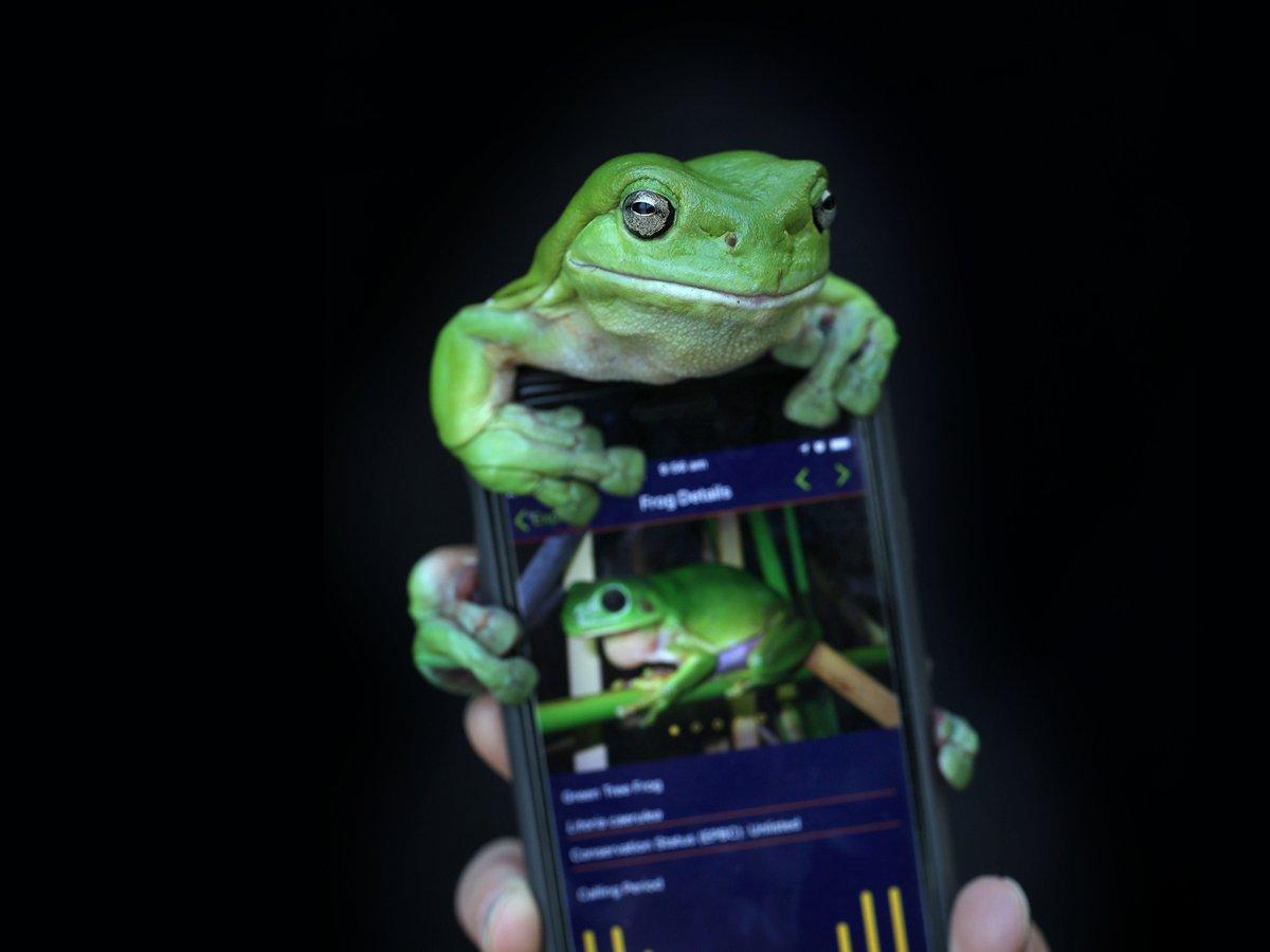 Museum mobile apps - The Australian Museum
